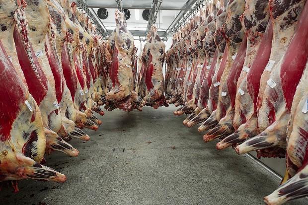 Metamorfozy rynku wołowiny