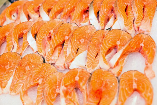 Spada eksport łososia norweskiego