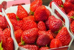 Kolejne spadki cen truskawek na rynkach hurtowych