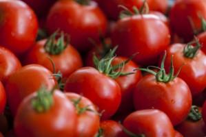 Producenci pomidorów walczą o wzrost spożycia w kraju