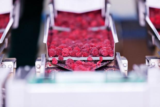Ostra konkurencja na rynku przetwórstwa owoców