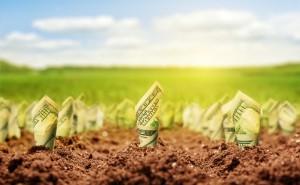 Przed nami nowa fala inwestycji w przemyśle spożywczym