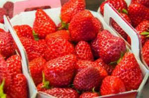 Zbiory truskawek w Polsce jeszcze się nie skończyły