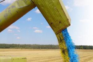 Rekord ukraińskiego eksportu zbóż w sezonie 2014/2015