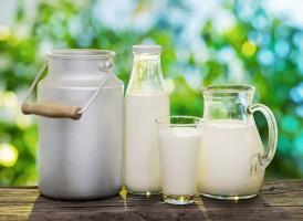 Produkcja mleka na świecie w ciągu dekady wzrośnie o jedną czwartą