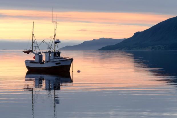 Projekt ustawy o wsparciu dla sektora rybackiego - do komisji