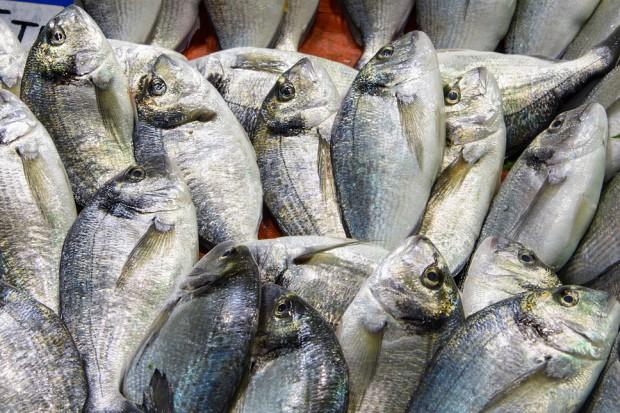 Niewielki spadek cen ryb i owoców morza