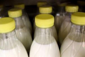 Unijna produkcja mleka nieznacznie się zwiększy w 2015 r.