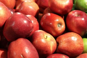 Zapowiadają się wysokie zbiory jabłek w Polsce