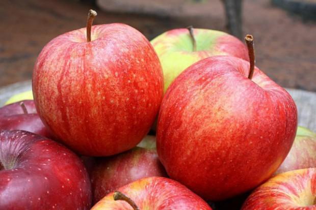 Spadł eksport jabłek z Polski