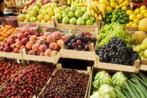 Po wprowadzeniu embarga eksport owoców i warzyw świeżych spadł o 17 proc.