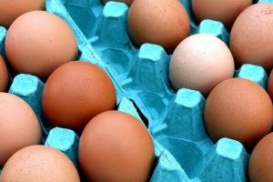 Rekordowe wyniki największego producenta jaj w USA