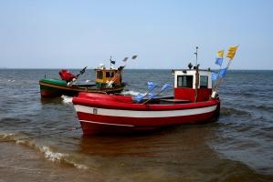 KE ponownie przeanalizuje liczebność dorsza bałtyckiego