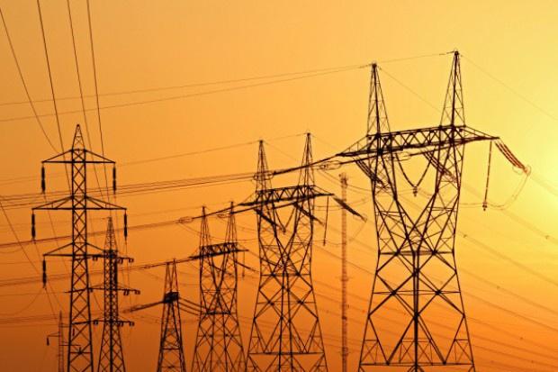 Brak prądu paraliżuje biznes spożywczy
