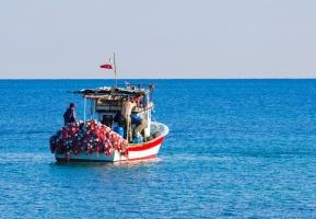 Ustawa o wspieraniu sektora rybackiego - jakie zmiany?