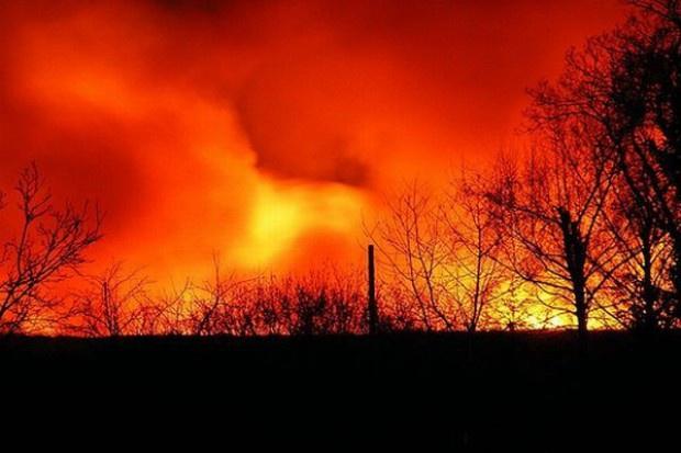 Pożar w hali grupy producentów owoców Rajpol