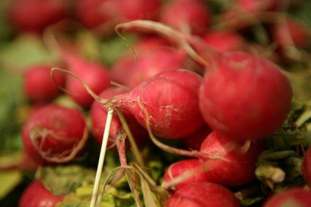 Jak susza wpływa na ceny warzyw i owoców?