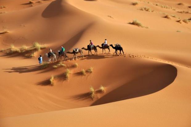 PAIiIZ zacieśnia współpracę z rynkami arabskimi