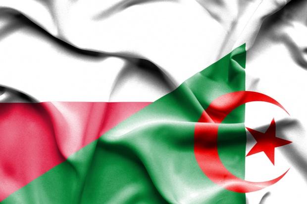 Dynamiczny rozwój współpracy gospodarczej z Algierią