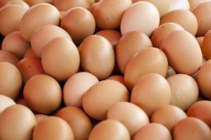 Starbucks chce używać jaj tylko od kur z wolnego wybiegu