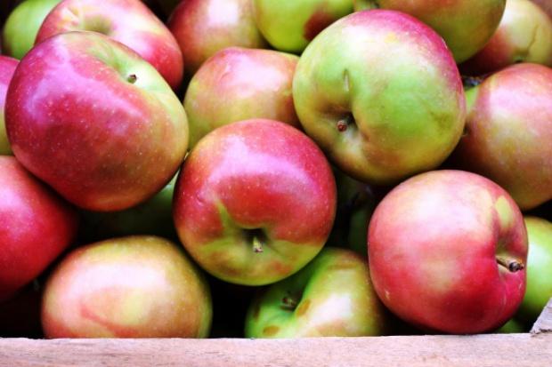 Polskie jabłka pojadą do Wietnamu