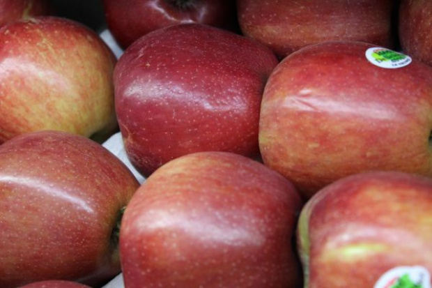 Rosyjskim przetwórcom brakuje polskich jabłek