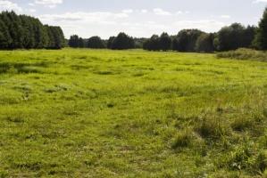 Rolnicy, którzy utrudniali przetargi na sprzedaż ziemi rolnej, trafili do aresztu