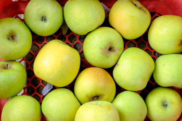 W Pucku w 180 sekund rozdano sześć ton jabłek