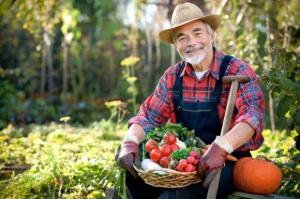 KE przeznaczy 111 mln euro na promocję żywności