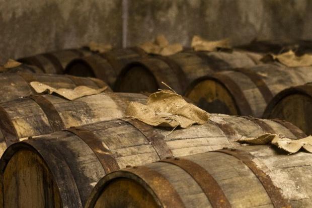 Na whisky można zarobić nawet 7 proc. rocznie