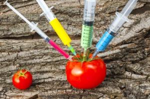 Naukowcy tworzą żywność bez kalorii