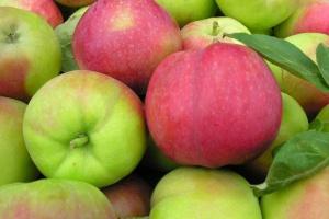 Chiński eksport koncentratu soku jabłkowego