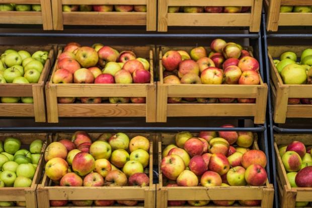 Polskie jabłka mogą pojechać do Wietnamu