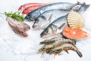 Aldi i Lidl rozszerzają ofertę ryb świeżych