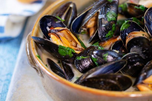 North Fish z nową koncepcją restauracji