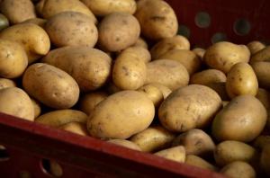 Polacy jedzą coraz mniej ziemniaków