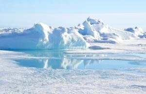 Arktyka szansą dla polskich firm?