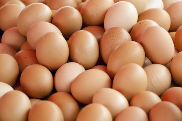 Unia Europejska: wzrasta eksport jaj i przetworów