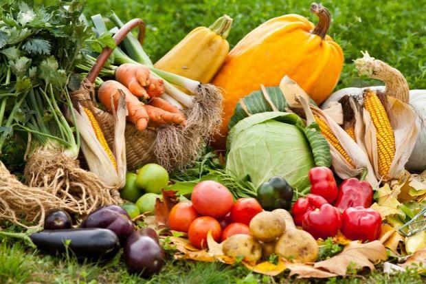 Rosja: Przez dwa tygodnie grudnia ceny owoców i warzyw wzrosły o 3,7 proc.