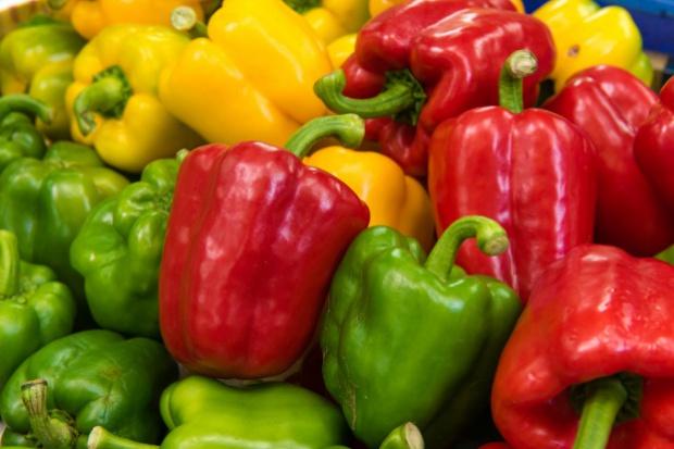 Producenci papryki apelują o wprowadzenie zmian w sektorze grup producentów