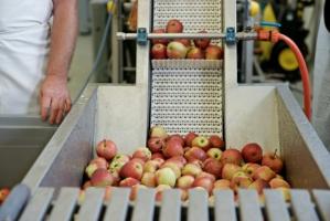 Przetwórcy żywności złożyli wnioski o dopłaty z ARiMR