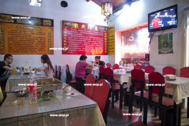 W chińskim barze w Łodzi zabijano psy? Straż miejska zamknęła lokal