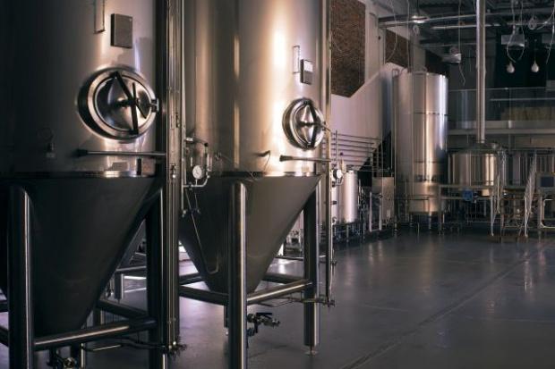 Browar Stu Mostów chce odtworzyć starodawne wrocławskie piwo