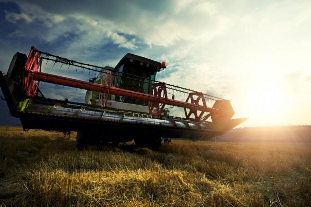 Copa-Cogeca apeluje do UE o szybkie decyzje w sprawie rolnictwa ekologicznego
