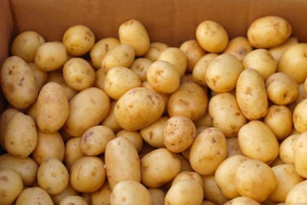 IERIGŻ: Wzrosną ceny ziemniaków