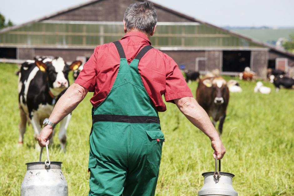Przejęcie Westbury przez Arla Foods uspokoi sytuację na brytyjskim rynku mleka