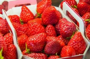 Wcześniejsze zbiory truskawek w Maroku to mniejsza podaż owoców do mrożenia