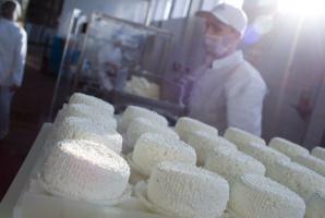 Milkiland ma zgodę na eksport do UE