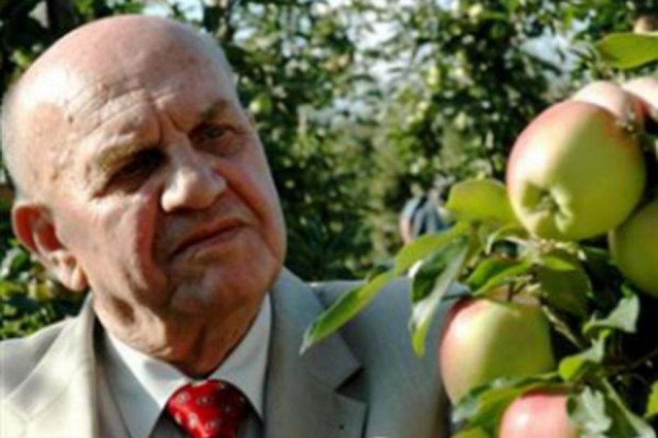 Polska za mało uwagi poświęca eksportowi jabłek do Europy