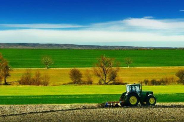 Umowa UE-USA może negatywnie wpłynąć na małe i średnie gospodarstwa w Polsce